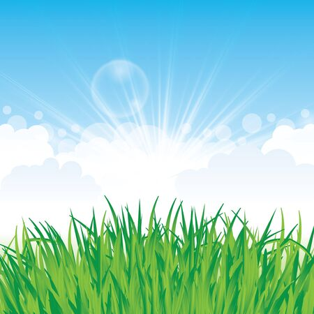 fragil: Beautiful spring background with grass and clouds Illustration