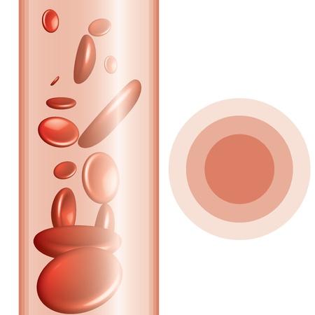 Les globules rouges fond abstrait