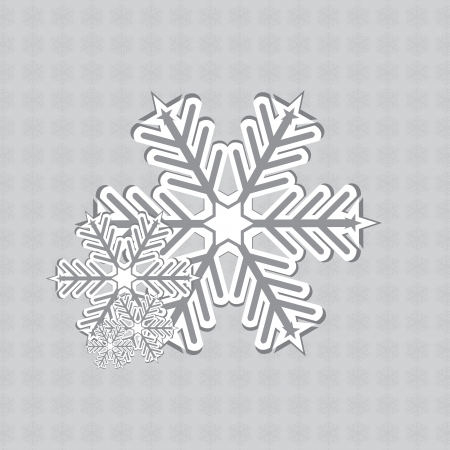 Abstract white silver vintage winter snowflakes design Vector