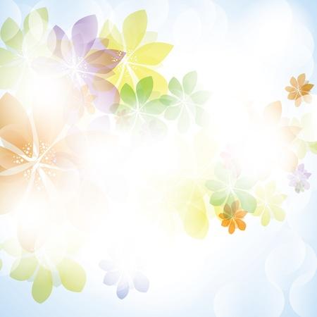 Bunter Sommer Frühling Hintergrund mit Blumen