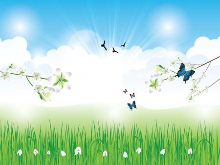 Beau fond de printemps avec de l'herbe nuages ??fleurs et des papillons Illustration