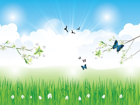 Beautiful spring background with grass clouds flowers and butterfly