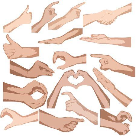 tippek: Állítsa be a vektor kezében elszigetelt fehér háttér Illusztráció
