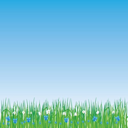 fragil: Beautiful spring background with grass flowers Illustration