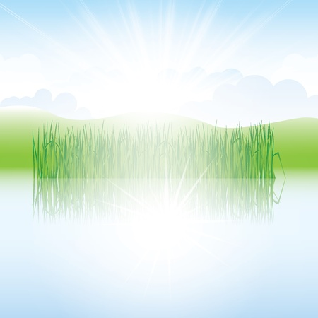 fragil: Beautiful spring background with lake and reeds