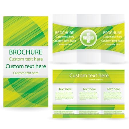 Vector Brochure Layout Design Template green medical Illustration