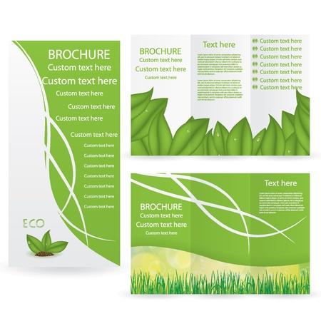 Vecteur Brochure Mise Modèle de conception verte de l'environnement