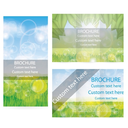 Vector Brochure Mise Design Mod�le vert environnemental