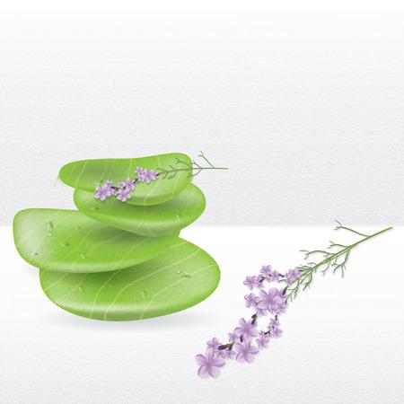 jade plant: Realistic spa jade stones with lavender herbal plant