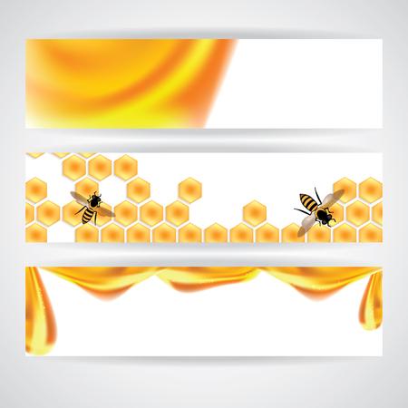 celula animal: Ilustración miel dulce, naranja bandera ilustración Vectores
