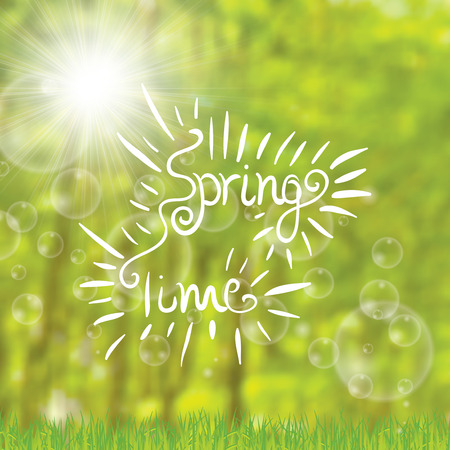 spring time: Abstract spring time trees forest green background