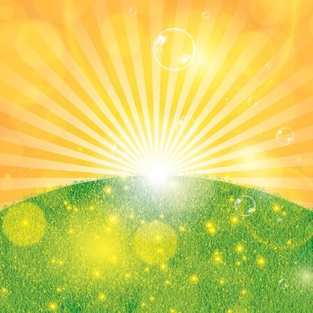 spring summer: Summer spring background with grass and sunlight Illustration