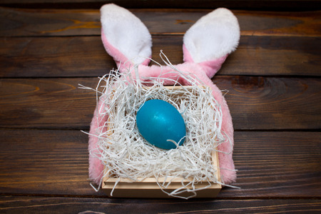 Blue chicken, dyed egg for the Easter holiday in a box on a wooden out-looking background with pink rabbit ears.