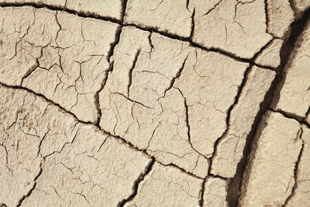 Cracks in the earth in rural areas. Ground texture background. Dry soil abstract photo. Mosaic pattern