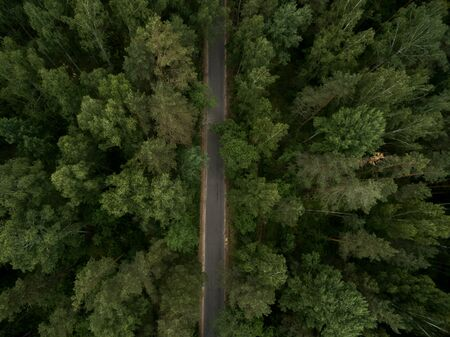 Asphalt road through the green forest. Summer landscape. Top view. Drone photo. 免版税图像