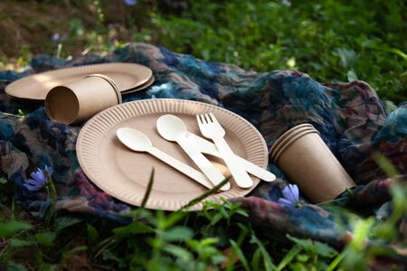 Disposable tableware from natural materials, wooden knife, spoon, fork, environmentally friendly. Ecological dishes in nature. Eco Picnic. Place for text.