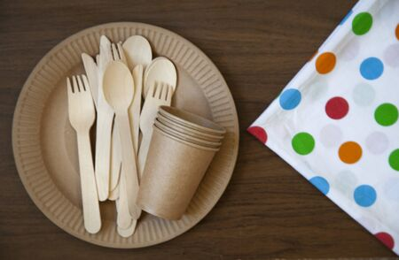 disposable eco dishes from paper cardboard spoon fork knife