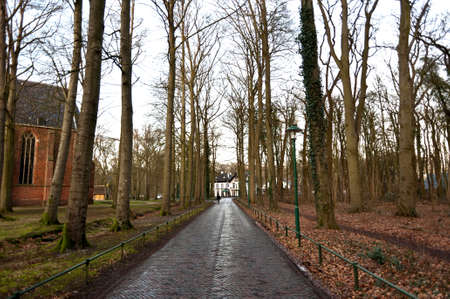 Road in wood to the castle somewhere in Netherlands background Stock Photo