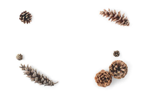 Corner frame made of cones various coniferous trees isolated on white, view from above. Free copy space.