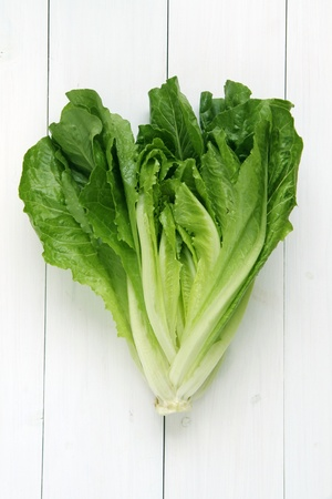 Cos lettuce isolated on whitewashed board