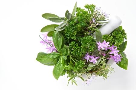cebollin: Las hierbas aisladas en blanco con un mortero Foto de archivo