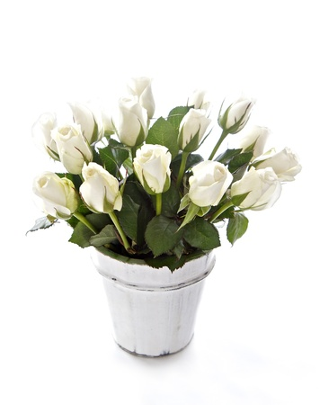 White roses in a whitewashed wooden bowl isolated on white Standard-Bild