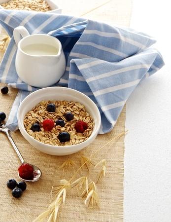 Ontbijt met haver en bessen Stockfoto