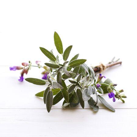 Sage tied in a bundle