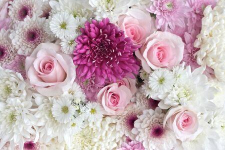 flores de cumplea�os: Las rosas rosadas y blancas y margaritas como fondo