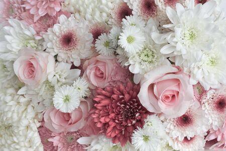 Achtergrond van madeliefjes en rozen Stockfoto