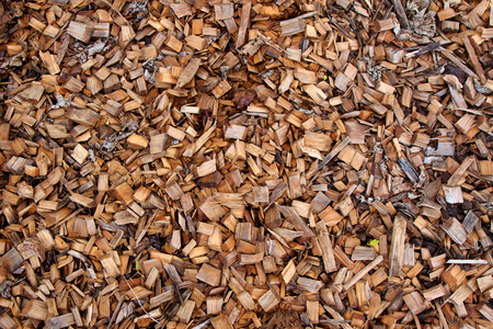 Wood chips for mulch in a garden as a background