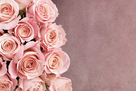 Border of Roses with textured background and space for text Stock Photo