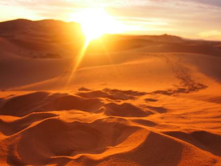 desert sand: Footprints in the sand