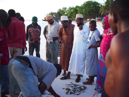 auction off: Kizimkazi, Zanzibar, Tanzania - December 1, 2015: Local fisherman auction off their days catch at the beach Editorial