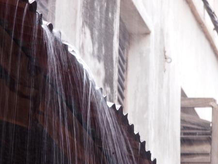 torrential: Torrential Rain