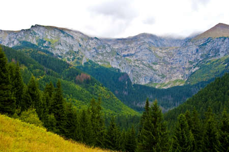 zakopane: Tatra Mountains near Zakopane Stock Photo