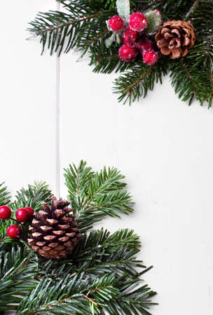 white back ground: Christmas decoration with cone spruce on a white back ground.