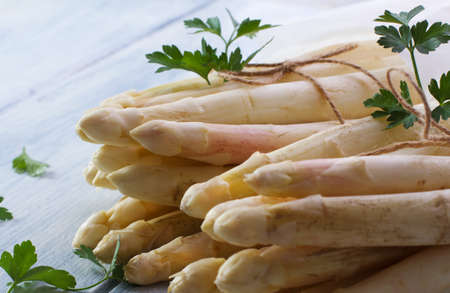 bundles: White asparagus bundles Stock Photo