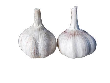 garlic on white background easy to use