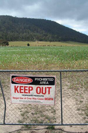 opiate: Hazard sign beside a poppy field in Tasmania Stock Photo