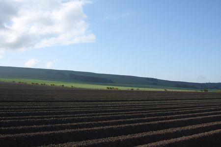 furrows: Plough field (furrowed) in North East Scotland