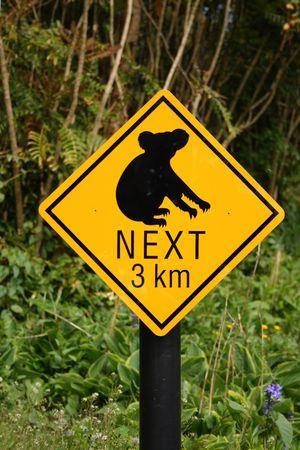 Koala bear hazard sign, Australia Stock Photo - 3074149