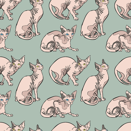 Hairless cats. Sphynx Cats. Seamless vector pattern (background).