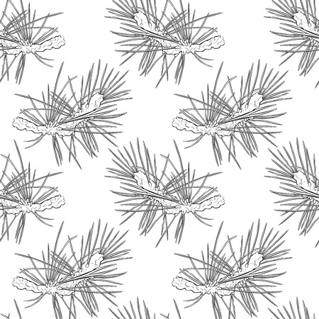 spruce: Spruce twigs. Spruce needles. Seamless vector pattern (background).