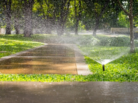 irrigation equipment: Automatic sprinkler watering in the garden Stock Photo
