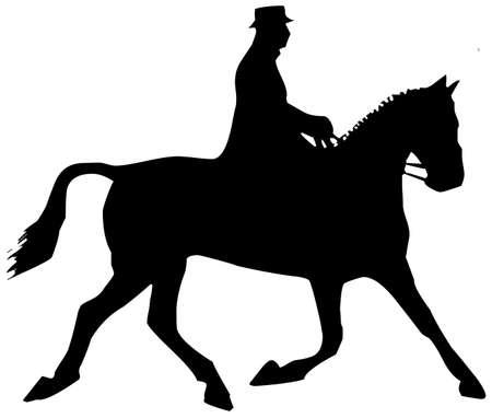 horse Stock Photo - 8648701