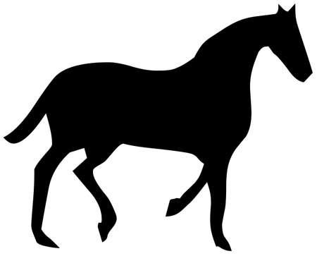 horse Stock Photo - 8648709