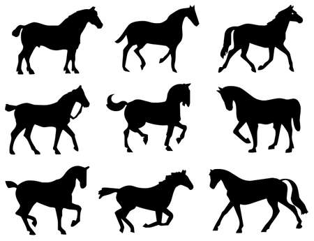 horse set symbol Stock Photo - 8648717