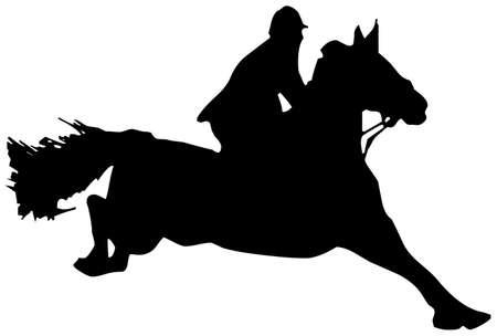 horse Stock Photo - 8648705