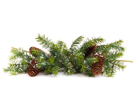 Cone and christmas tree isolated on white Stock Photo - 10872002